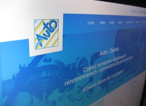Strona www Auto-Zatoka
